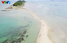 Đảo Điệp Sơn - Điểm đến không thể bỏ qua trong mùa hè này