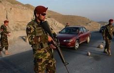 Afghanistan tiêu diệt thủ lĩnh chủ chốt của Taliban