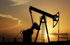 Thời điểm nhu cầu tiêu thụ dầu trên thế giới đạt đỉnh?