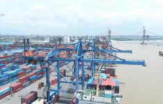 Doanh nghiệp vận tải thiệt hại do tuyến luồng sa bồi