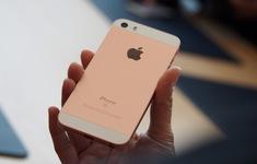 Apple im tiếng: Sẽ không có iPhone SE 2?