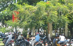 Tiếp diễn nắng nóng trên diện rộng ở khắp các tỉnh thành từ Thanh Hóa đến Ninh Thuận