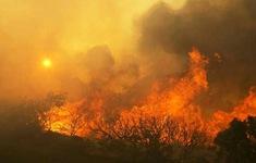 Hàng nghìn người Mỹ phải sơ tán do cháy rừng ở bang California