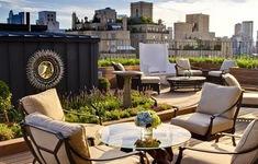 Ý tưởng thiết kế vườn trên sân thượng tuyệt đẹp
