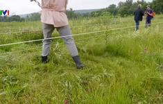 Cuộc thi cắt cỏ quốc tế tại Nga