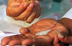 Anh: Phát hiện kim cương trị giá 150.000 tỷ tỷ Bảng trong lòng đất