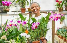 Làm việc sau nghỉ hưu mang lại 7 lợi ích tuyệt vời