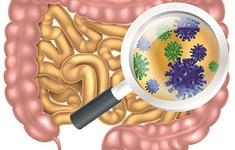Lợi khuẩn đường ruột có thể ảnh hưởng đến quá trình giảm cân