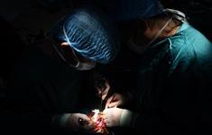 Khám sàng lọc bệnh tim miễn phí tại Nghệ An