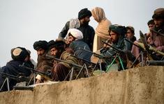 Afghanistan tuyên bố ngừng bắn với Taliban nhân lễ Eid al-Adha
