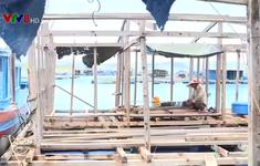 Nguy cơ tái diễn rủi ro thiên tai ở vùng nuôi thủy sản