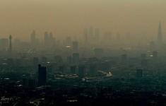 Nhau thai bị ảnh hưởng nghiêm trọng do ô nhiễm không khí