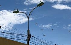 VTV Đặc biệt tháng 9: Những cuộc gặp trong tù