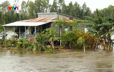 Cảnh báo nguy cơ ngập lụt vùng trũng ĐBSCL
