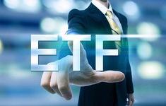 HSX công bố kết quả tái cơ cấu quỹ VFMVN30 ETF