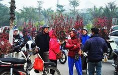 Chuỗi sự kiện Nét Xuân xưa tại phố Cổ Hà Nội