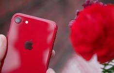 Chú ý: iPhone SE 2 có bản màu đỏ, giá thì siêu tốt!
