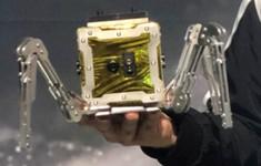 Ra mắt robot thăm dò Mặt trăng
