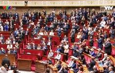 Hạ viện Pháp cho phép các cặp đồng tính nữ có con