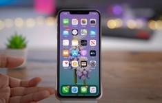 50% thiết bị iPhone đã nâng cấp lên iOS 13