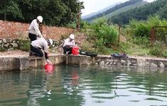 Khởi tố vụ án gây ô nhiễm nguồn nước sạch sông Đà cung cấp cho TP. Hà Nội