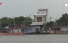 Cà Mau: Nhiều tàu cá đóng theo Nghị định 67 thua lỗ