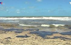 Dầu loang tại Brazil đe dọa rạn san hô