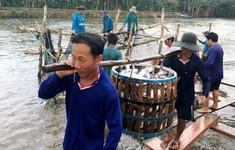 Mỹ tiếp tục là thị trường xuất khẩu thủy sản lớn nhất của Việt Nam