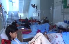 Bùng phát dịch sốt xuất huyết tại Quảng Bình
