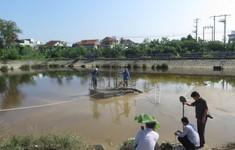 Xử lý việc Công ty cổ phần cấp nước Nghệ An xả bùn thải ra hồ Cửa Nam