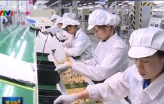 Thiếu lao động: Thách thức lớn của nhiều doanh nghiệp Việt