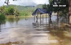 Hơn 1.000 hộ dân bị cô lập do lũ ở huyện Tuy An, Phú Yên