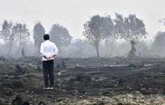 Mức phạt đối với các công ty gây cháy rừng tại Indonesia
