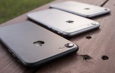 Những mẫu iPhone cũ giá tốt đáng mua