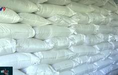 Triển khai tích cực việc bảo hộ bản quyền gạo ngon ST25
