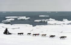 Biến đổi khí hậu ảnh hưởng đến ngư trường lớn nhất của Mỹ