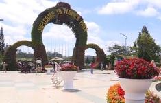 Lưu ý khi du lịch Đà Lạt dịp Festival hoa