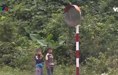 Quảng Trị: Nguy cơ tai nạn do phá hỏng thiết bị an toàn giao thông