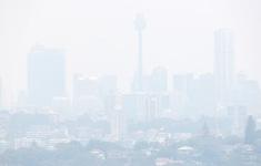 """Thành phố Sydney, Australia """"cháy hàng"""" khẩu trang vì ô nhiễm không khí"""