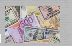 Đồng Euro có thể lên giá vào năm 2020?