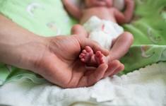Phương pháp xét nghiệm máu giúp giảm tỉ lệ sinh non