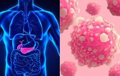Điều chỉnh 2 loại enzyme có thể giúp điều trị ung thư tuyến tụy