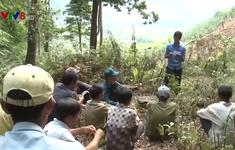 Hiệu quả công tác giao khoán rừng cho dân
