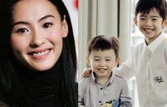 Trương Bá Chi không hối hận khi từ bỏ sự nghiệp lại phía sau