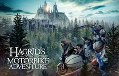 Hàng trăm fan Harry Porter xếp hàng 10 giờ trải nghiệm tàu lượn siêu tốc Hagrid