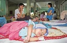 Nhiều người tử vong do viêm não Nhật Bản tại Ấn Độ