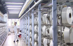 Phục hồi sản xuất nhà máy xơ sợi Đình Vũ