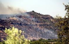 Cháy rừng không thể kiểm soát tại Tây Ban Nha