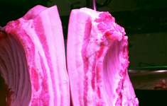 Trung Quốc: Sản lượng thịt lợn giảm ít hơn dự đoán trong nửa đầu năm 2019
