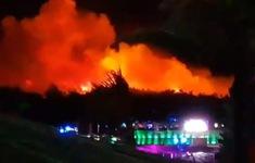Sơ tán 10.000 người do cháy rừng tại Croatia